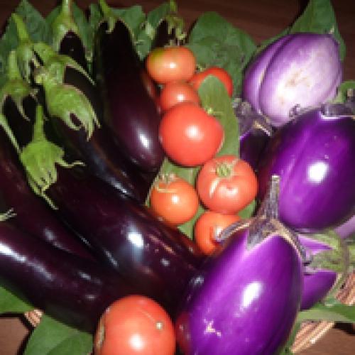 I Prodotti dell'orto e del frutteto